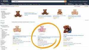 amazon-sponsored-product-ads-example